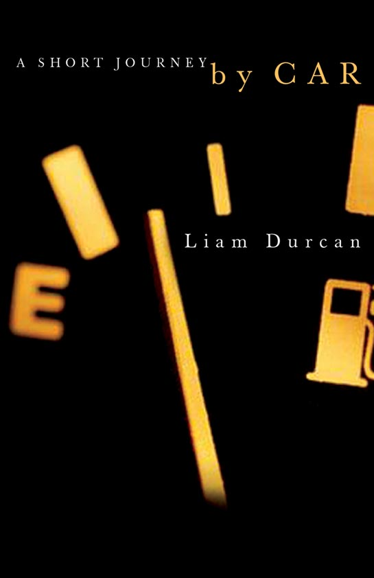 A Short Journey by Car by Liam Durcan
